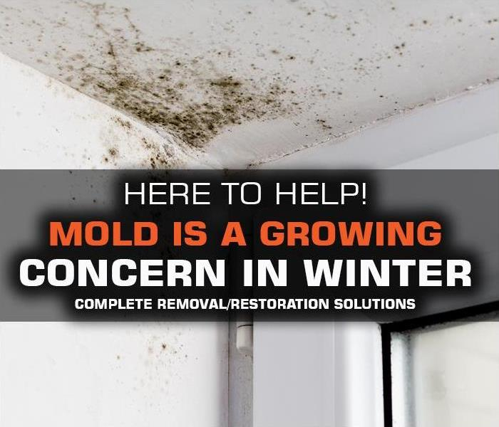 Why SERVPRO Mold is a GROWING ISSUE for many Manhattan home and business owners/renters DURING WINTER.